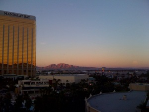 Mandalay Bay View 1